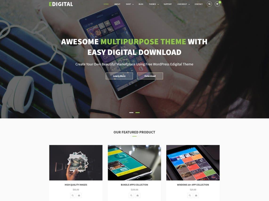 4 Best Software Company WordPress Themes