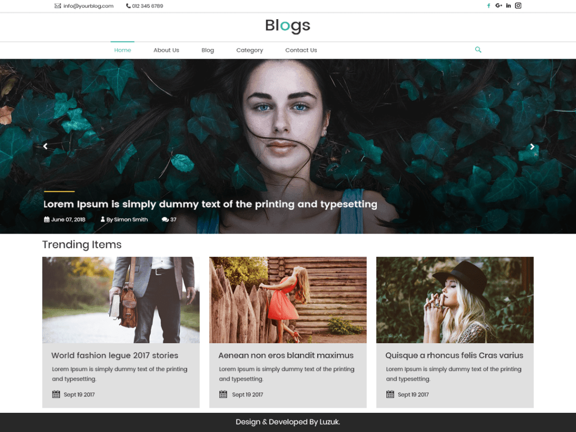 Best Free WordPress Newsletter Themes