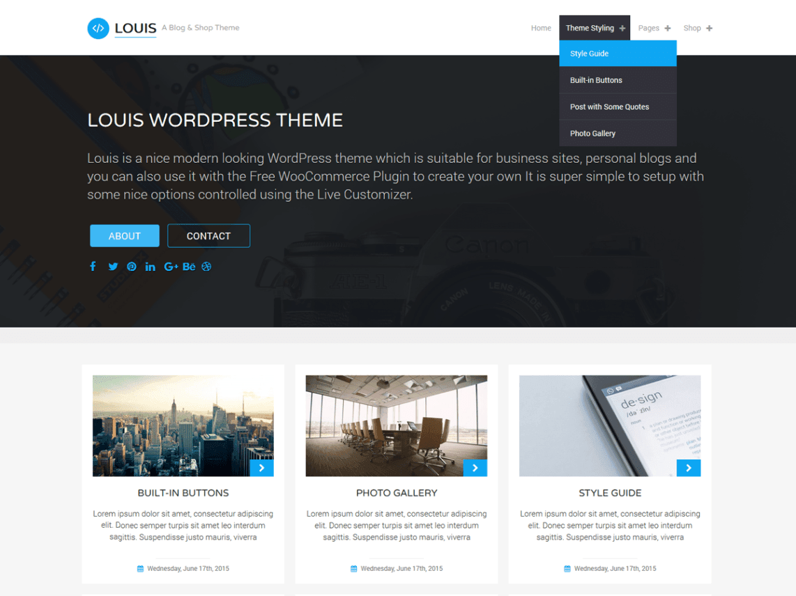 Best Free WordPress Ecommerce Blog Themes