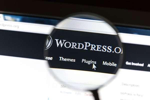 WordPress Plugins that improve site speed