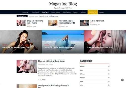 10 Best Free WordPress Blog Themes